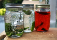 Try this this weekend: Make your own jalapeno vodka.